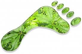 duurzaamheid-conti-venlo-administratiekantoor-venlo